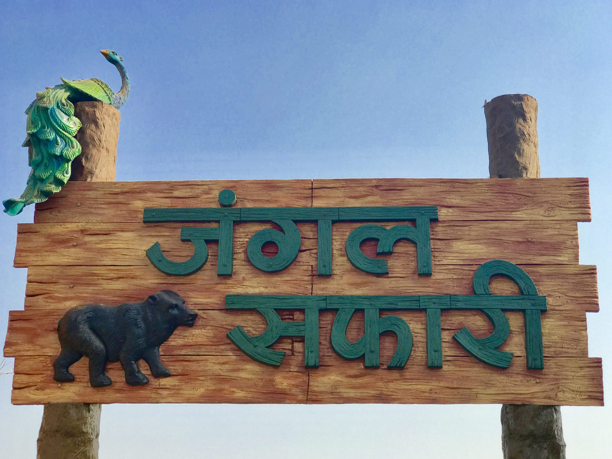 raipur jungle safari